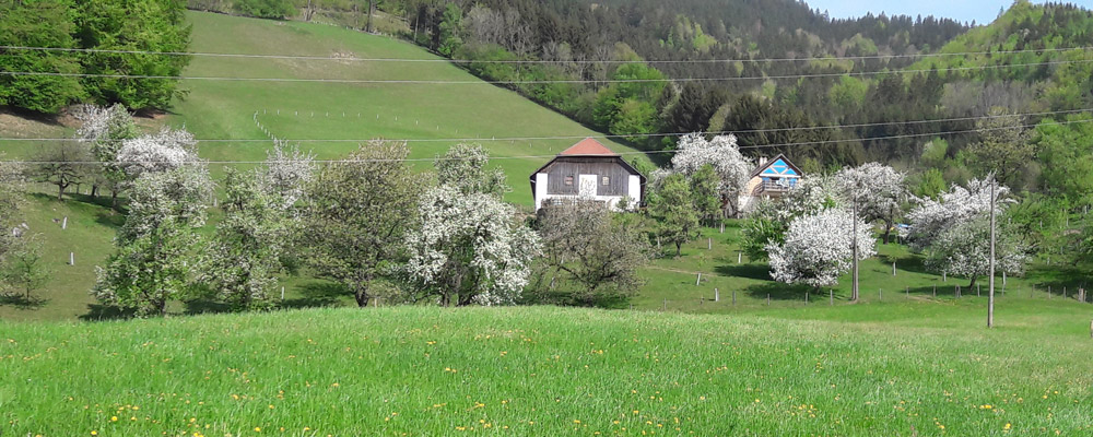 biohof2019_3